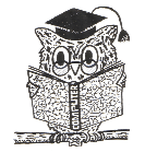 Wilmington primary owl